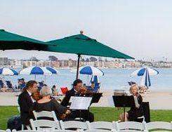 Zene Strings-beach