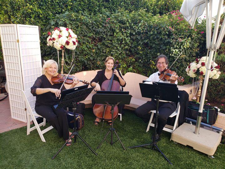 Zene Strings - La Jolla