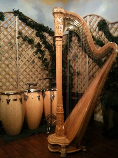 Hip Harp Duo for Reception