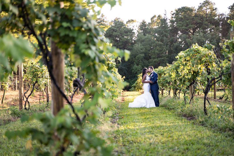Vineyard Photos
