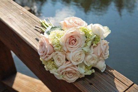 Tmx 1340904503865 Cd7dd8dcc736b29ffff8788ffffe41e Estes Park, Colorado wedding florist