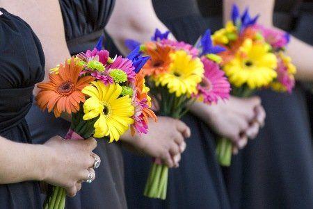 Tmx 1340904512042 KB17120copy Estes Park, Colorado wedding florist