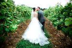 The Winery at Bull Run image