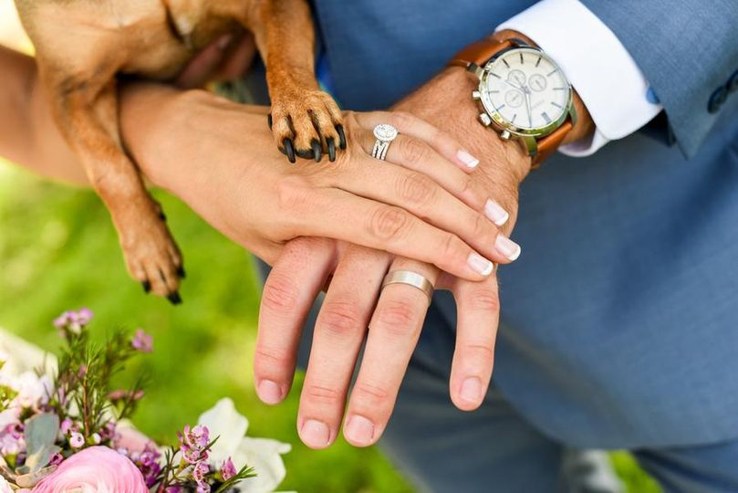 Wedding rings and paw