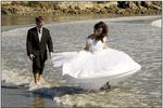 Carl Walsh Weddings image