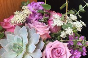 Pots & Petals