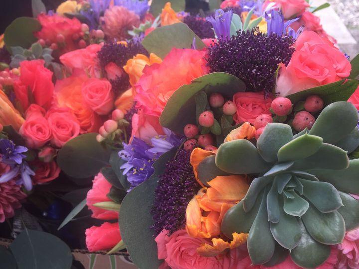 Tmx 1473178546746 Succulent  Coral Arrangements Silverthorne, Colorado wedding florist