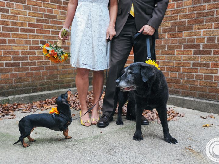 Tmx Lis And Jeff Blog 18 51 115218 Muskegon, MI wedding florist