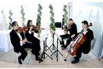 Bella Musica Ensembles image