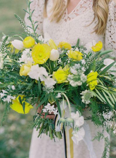 Yellow and White Palatte