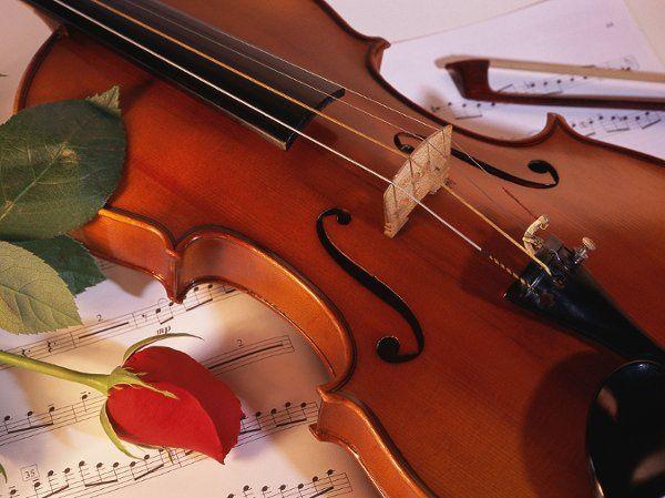 Violin4x3