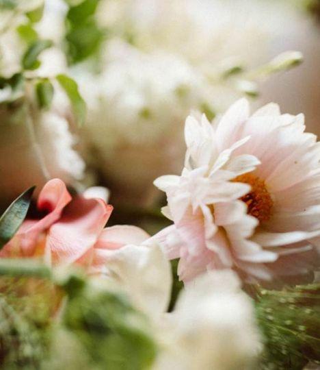 Close up of bridal blooms