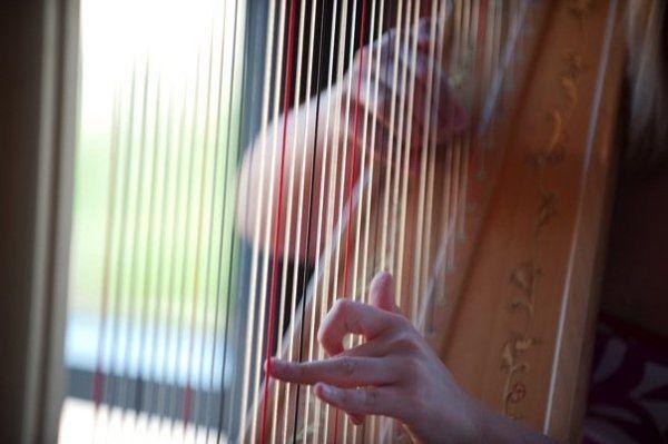 Cara Fleck, Maryland harpist
