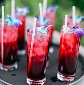 Birchtree Catering's local, seasonal menu offerings - seasonal cocktails  - you provide the alcohol...