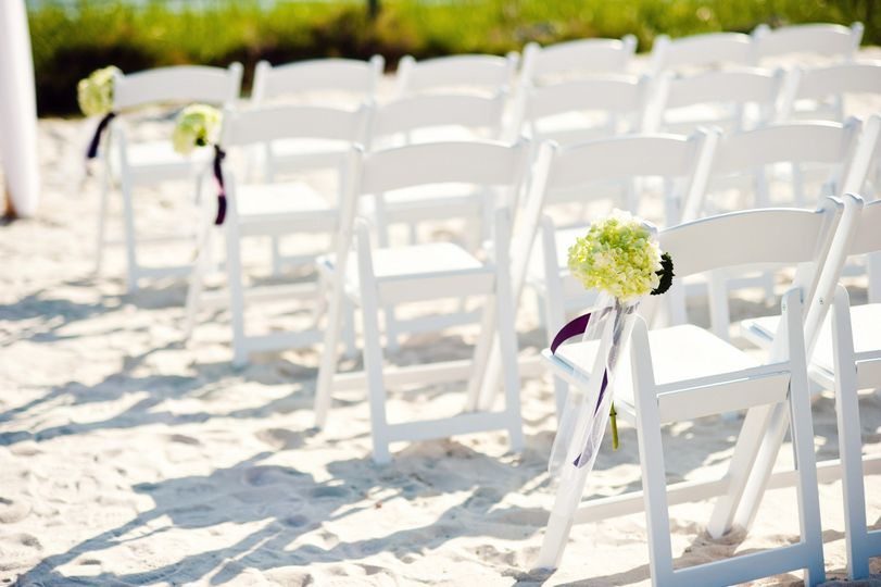 Oystercatcher's beach ceremony