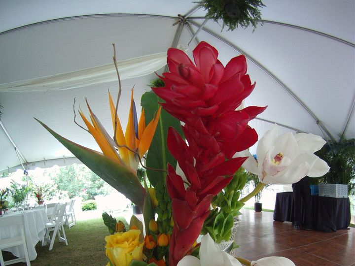 Tmx 1433973608871 Gopr0211 Greenville, SC wedding florist