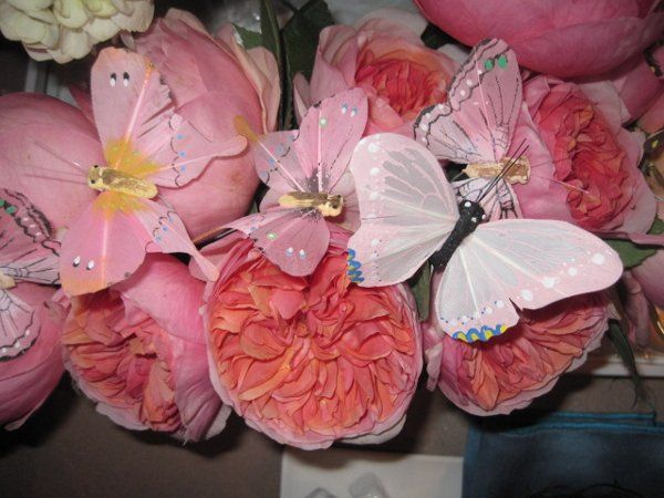 pink peonies with butterflies