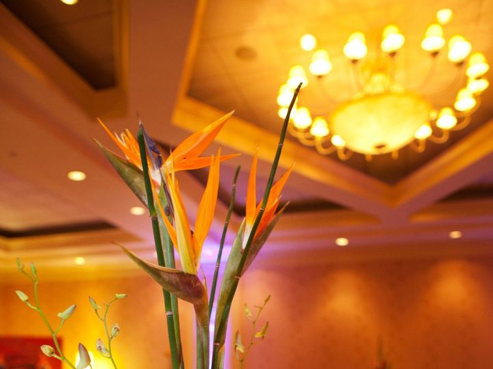 Tmx 1477482613436 Rb3 Tampa wedding florist