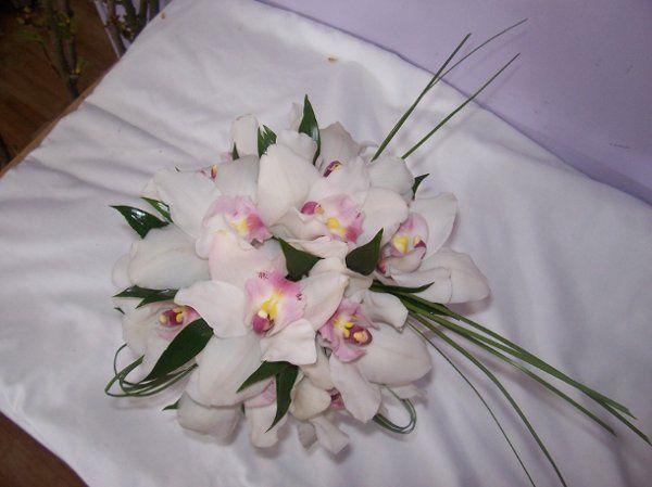petals177