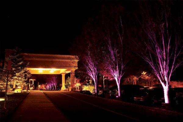 Manor driveway