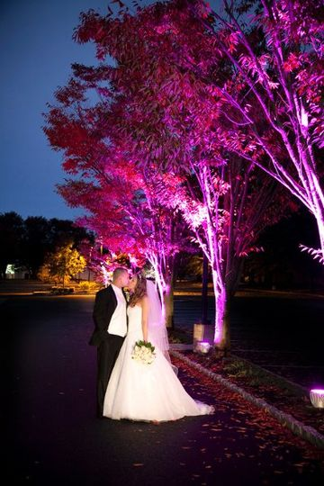 Newlyweds pose by the trees