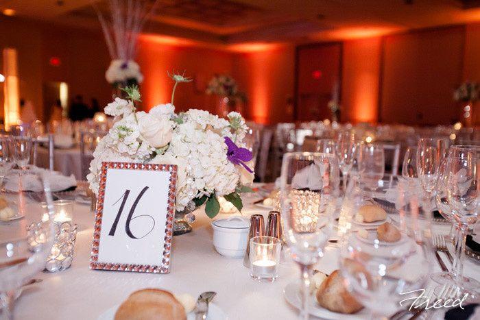 Tmx 1395424272791 Freed12793062 Arlington, VA wedding venue