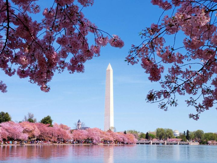Tmx 1486498008306 Wes1508wn 145388 Washingtonmonumenthd Arlington, VA wedding venue