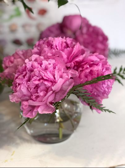 Vase of pink peonies