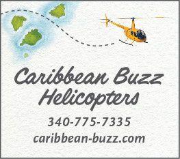 caribbean buzz logo