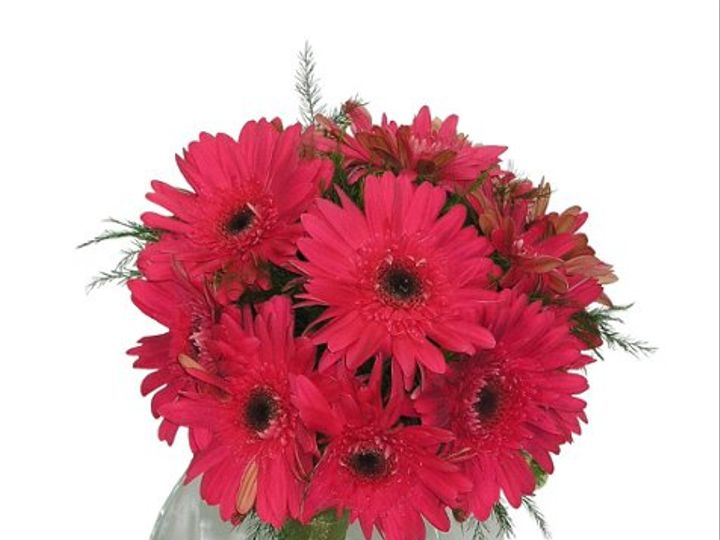 Tmx 1257777029954 WildestDreamsHighRezcopy Cedar Falls, IA wedding florist