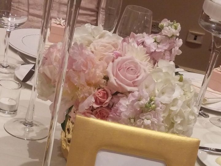 Tmx 1520927728 F32eb0d89a046654 1478712867342 0625161621a Aurora, IL wedding planner