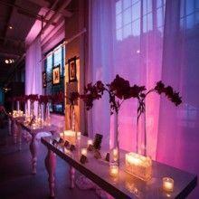 Tmx 1529001731 D076ef7ee0789758 1529001731 3a9d50dd7e4da475 1529001727596 17 Flowers Philadelphia, PA wedding venue