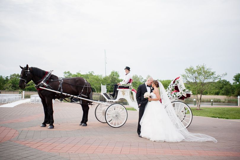 Carriage to love
