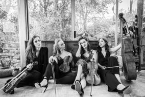 Sienna String Quartet
