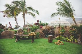 The Catered Coconut
