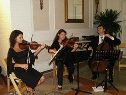Wedding String Trio