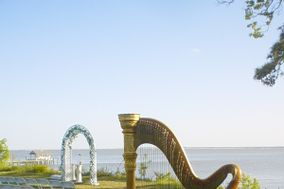 Shelley Greene, Harpist