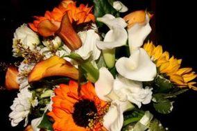 Bouts N Bouquets Florists