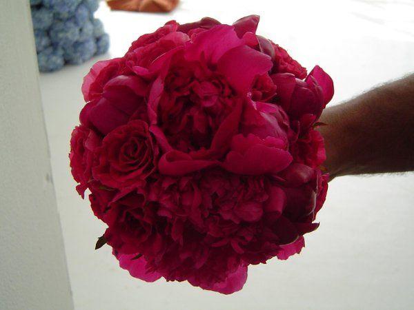 Tmx 1233603204859 TheKnotPhotoShoot033 Bronx, NY wedding florist