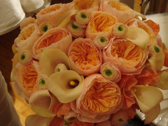 Tmx 1364309759747 004 Bronx, NY wedding florist