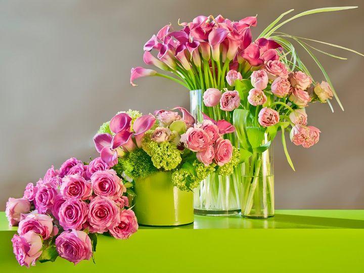 Tmx 1364310911233 010 Bronx, NY wedding florist