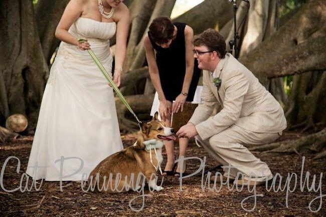 Tmx 1386180263872 Aacar Sarasota wedding officiant
