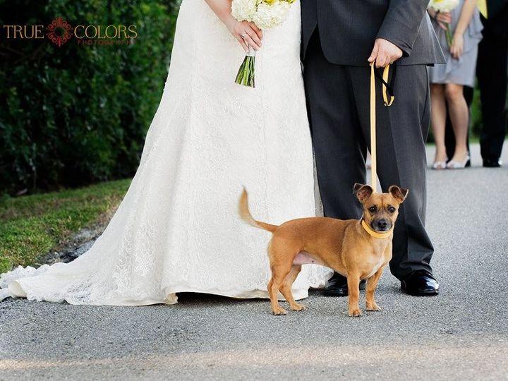 Tmx 1386183390399 Renee Eric Foxy  Sarasota wedding officiant
