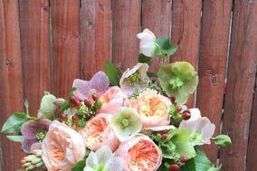 Violet's Event & Floral Design