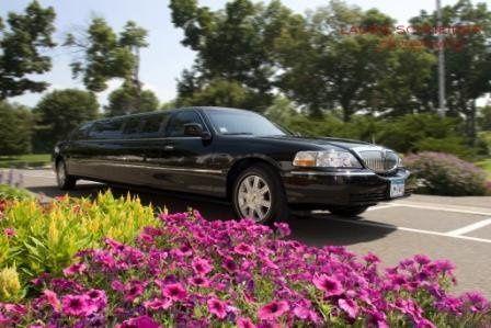Tmx 1363016278884 Blacklimousine Minneapolis, MN wedding transportation