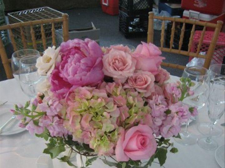 Tmx 1264515350387 IMG6915 Lafayette Hill, Pennsylvania wedding florist