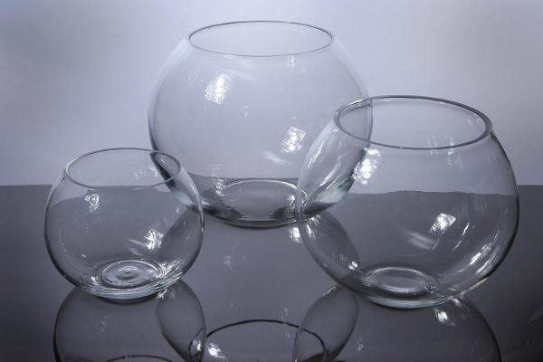 Fishbowl vases!