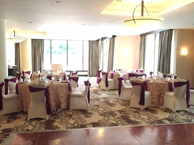 Miraculous Brown Co Chair Covers And Linens Event Rentals Squirreltailoven Fun Painted Chair Ideas Images Squirreltailovenorg