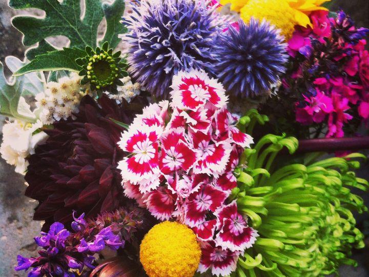Tmx 1416335226234 Img2591 Denver, CO wedding florist