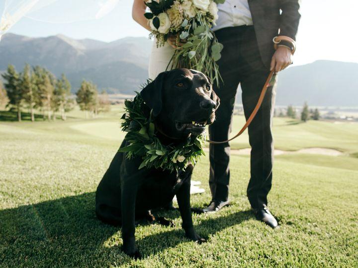 Tmx 1487012769817 Calliealexdogwreath Denver, CO wedding florist